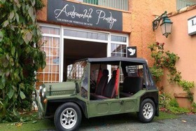 location Mini Moke verte